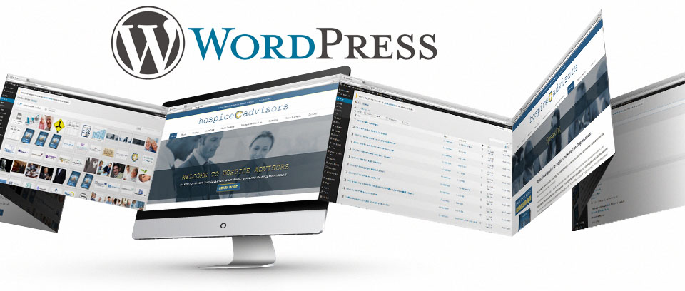 Wordpress Website Design