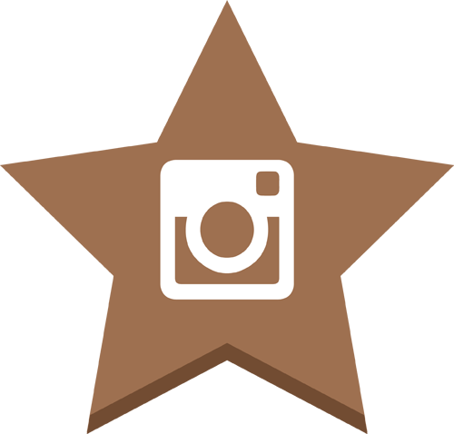 instrgram star